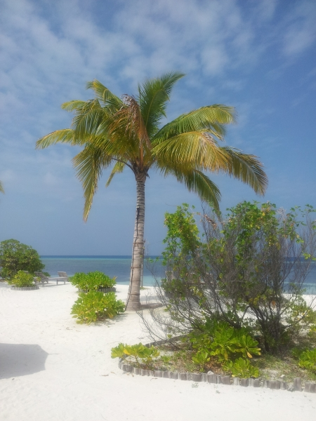 Počitnice na Maldivih - koristni napotki pri izbiri ustrezenega letovišča na Maldivih